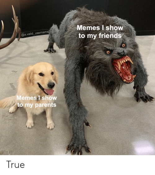 Friends, Memes, and True: Memes I show  to my friends  @a.valid_usernam  Memes show  to my paren True
