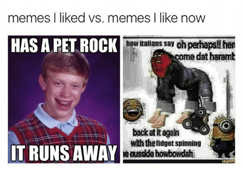 Harambism: memes l liked vs. memes I like now  HAS A PET ROCK  how italians say oh pernaps  come dat haramb  AT  back at it again  with thefidget spinning  IT RUNS AWAY  unn