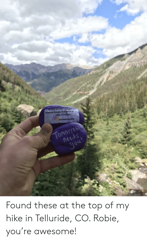 telluride: memory Of Roniweve you  National Suicide Prevention #  1800-273-8255  roobieshopedsa  Tonorro  Reeds  Jou! Found these at the top of my hike in Telluride, CO. Robie, you're awesome!