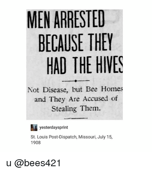 Trendy, Bee, and Dispatch: MEN ARRESTED  BECAUSE THEY  HAD THE HIVES  Not Disease, but Bee Homes  and They Are Accused of  Stealing Them.  yesterdaysprint  St. Louis Post-Dispatch, Missouri, July 15,  1908 u @bees421