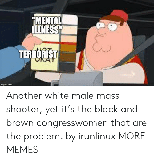 """terrorist: MENTAL  ILLNESS""""  TERRORIST  imgflip.com Another white male mass shooter, yet it's the black and brown congresswomen that are the problem. by irunlinux MORE MEMES"""