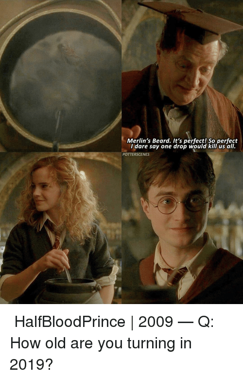 Beard, Memes, and Old: Merlin's Beard. It's perfect! So perfect  I dare say one drop would kill us all.  POTTERSCENES ➙ HalfBloodPrince | 2009 — Q: How old are you turning in 2019?