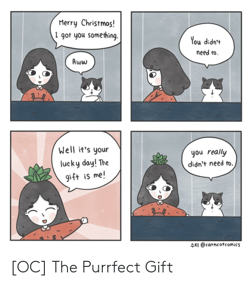 Aww, Christmas, and Merry Christmas: Merry Christmas!  1 got you some thing  You didn'*  need to.  Aww  Well it's your  lucky day! The  gift is me!  you really  didn't need to.  수지 @catncat comics [OC] The Purrfect Gift