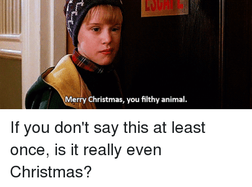 animals anime and christmas merry christmas you filthy animal if you