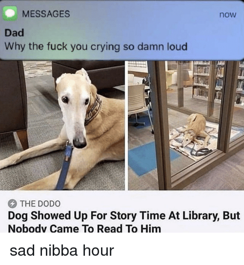 Crying, Dad, and Fuck You: MESSAGES  now  Dad  Why the fuck you crying so damn loud  THE DODO  Dog Showed Up For Story Time At Library, But  Nobodv Came To Read To Him sad nibba hour