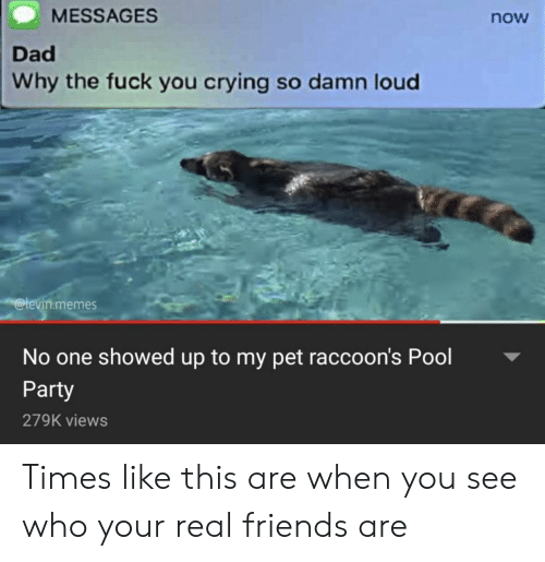 Real Friends: MESSAGES  now  Dad  Why the fuck you crying so damn loud  @levin.memes  No one showed up to my pet raccoon's Pool  Party  279K views Times like this are when you see who your real friends are