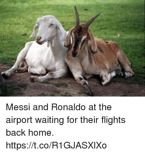 Soccer, Home, and Messi: Messi and Ronaldo at the airport waiting for their flights back home. https://t.co/R1GJASXlXo