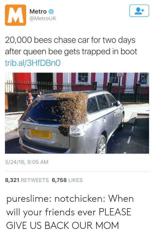 Booted: Metro  @MetroUK  20,000 bees chase car for two days  after queen bee gets trapped in boot  trib.al/3HfDBnO  5/24/16, 9:05 AM  8,321 RETWEETS 6,758 LIKES pureslime: notchicken:  When will your friends ever   PLEASE GIVE US BACK OUR MOM