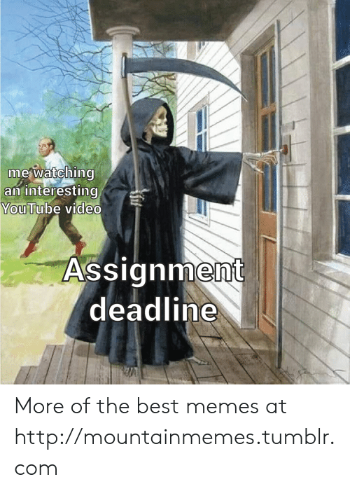 assignment: mewatching  an interesting  YouTube video  Assignment  deadline More of the best memes at http://mountainmemes.tumblr.com