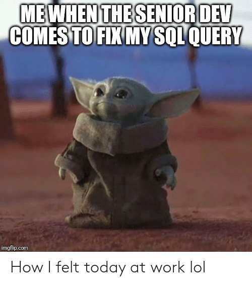 senior: MEWHEN THE SENIOR DEV  COMES TO FIX MY SQLQUERY  imgflip.com How I felt today at work lol