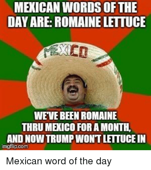 Mexican Word of the Day: MEXICAN WORDS OFTHE  DAY ARE: ROMAINE LETTUCE  WEVE BEEN ROMAINE  THRU MEXICO FOR A MONTH  AND NOW TRUMP WONT LETTUCE IN  imgflip.com Mexican word of the day