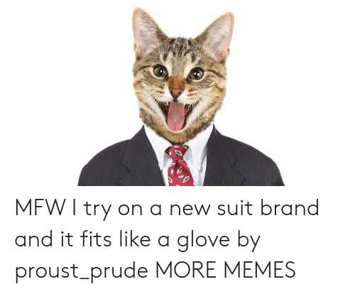 Glove: MFW I try on a new suit brand and it fits like a glove by proust_prude MORE MEMES