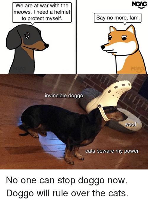 Cats, Fam, and Memes: MGAG  We are at war with the  meows. I need a helmet  to protect myself.  Say no more, fam.  MEAG  invincible doggo  woof  cats beware my power No one can stop doggo now. Doggo will rule over the cats.