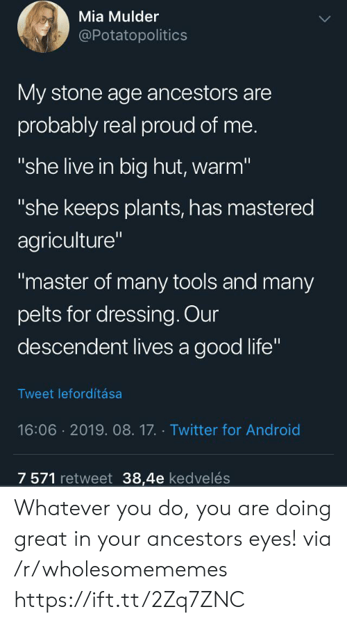 "Android, Life, and Twitter: Mia Mulder  @Potatopolitics  My stone age ancestors are  probably real proud of me.  ""she live in big hut, warm""  ""she keeps plants, has mastered  agriculture""  ""master of many tools and many  pelts for dressing. Our  descendent lives a good life""  Tweet lefordítása  16:06 2019. 08.17. Twitter for Android  7 571 retweet 38,4e kedvelés Whatever you do, you are doing great in your ancestors eyes! via /r/wholesomememes https://ift.tt/2Zq7ZNC"