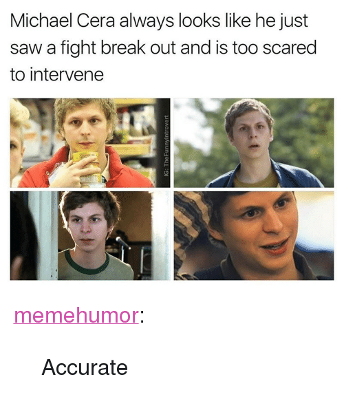 """Michael Cera, Saw, and Tumblr: Michael Cera always looks like he just  saw a fight break out and is too scared  to intervene <p><a href=""""http://memehumor.net/post/163894366547/accurate"""" class=""""tumblr_blog"""">memehumor</a>:</p>  <blockquote><p>Accurate</p></blockquote>"""