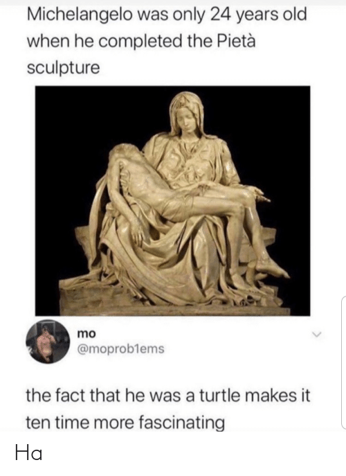 That He: Michelangelo was only 24 years old  when he completed the Pietà  sculpture  mo  @moproblems  the fact that he was a turtle makes it  ten time more fascinating Ha
