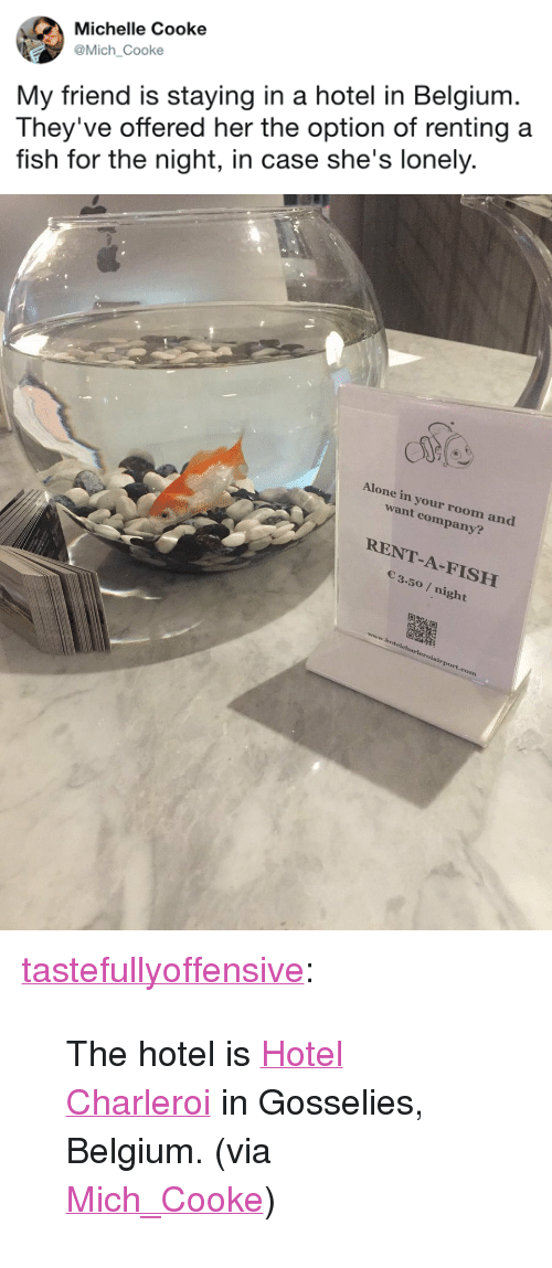 """Cooke: Michelle Cooke  @Mich Cooke  My friend is staying in a hotel in Belgium  They've offered her the option of renting a  fish for the night, in case she's lonely.   Alone in your room and  want company?  RENT-A-FISH  3.50 / night <p><a href=""""http://tumblr.tastefullyoffensive.com/post/164979681728/the-hotel-is-hotel-charleroi-in-gosselies"""" class=""""tumblr_blog"""" target=""""_blank"""">tastefullyoffensive</a>:</p><blockquote><p>The hotel is<a href=""""https://www.hotelcharleroiairport.be/"""" target=""""_blank"""">Hotel Charleroi</a>in Gosselies, Belgium. (via <a href=""""https://twitter.com/Mich_Cooke/status/903918405949972480"""" target=""""_blank"""">Mich_Cooke</a>)</p></blockquote>"""