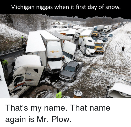 Michigan, Snow, and Dank Memes: Michigan niggas when it first day of snow  61725