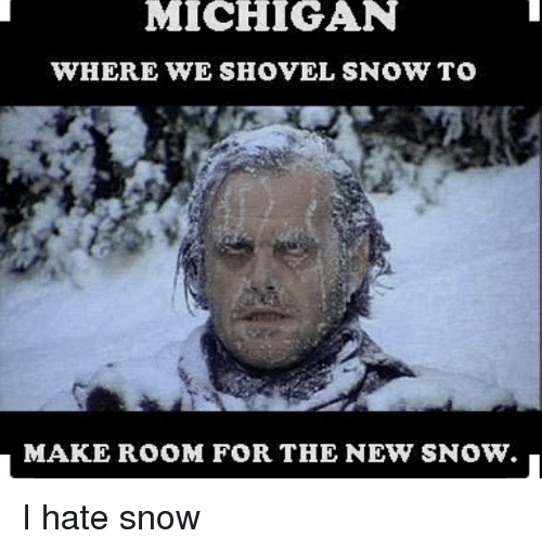 Memes, 🤖, and Hate: MICHIGAN  WHERE WE SHOVEL SNOW TO  MAKE ROOM FOR THE NEW SNOW. I hate snow