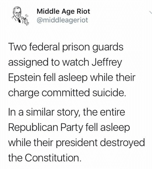 Republican Party: Middle Age Riot  @middleageriot  Two federal prison guards  assigned to watch Jeffrey  Epstein fell asleep while their  charge committed suicide.  In a similar story, the entire  Republican Party fell asleep  while their president destroyed  the Constitution