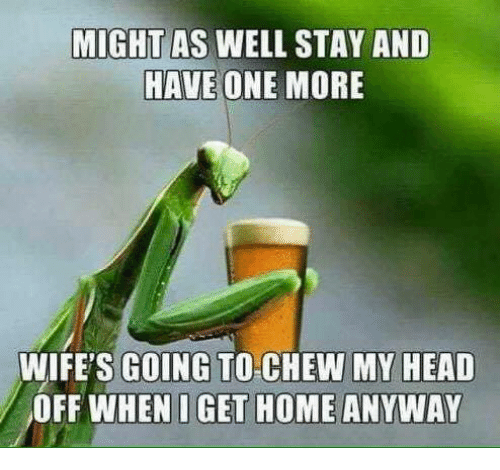 Dank, Head, and Home: MIGHT AS WELL STAY AND  HAVE ONE MORE  WIFE'S GOING TO CHEW MY HEAD  OFF WHEN I GET HOME ANYWAY
