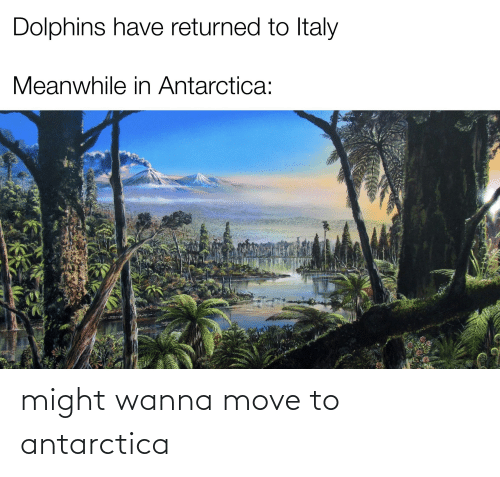 Antarctica: might wanna move to antarctica
