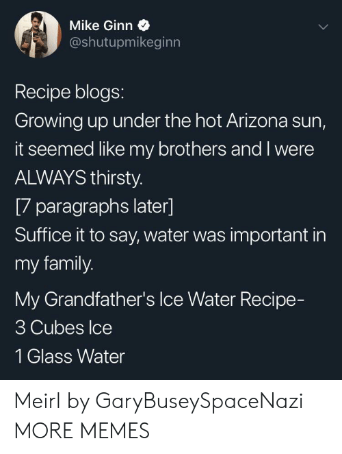 Paragraphs: Mike Ginn  @shutupmikeginn  Recipe blogs:  Growing up under the hot Arizona sun,  it seemed like my brothers and I were  ALWAYS thirsty.  [7 paragraphs later]  Suffice it to say, water was important in  my family.  My Grandfather's Ice Water Recipe-  3 Cubes Ice  1 Glass Water Meirl by GaryBuseySpaceNazi MORE MEMES