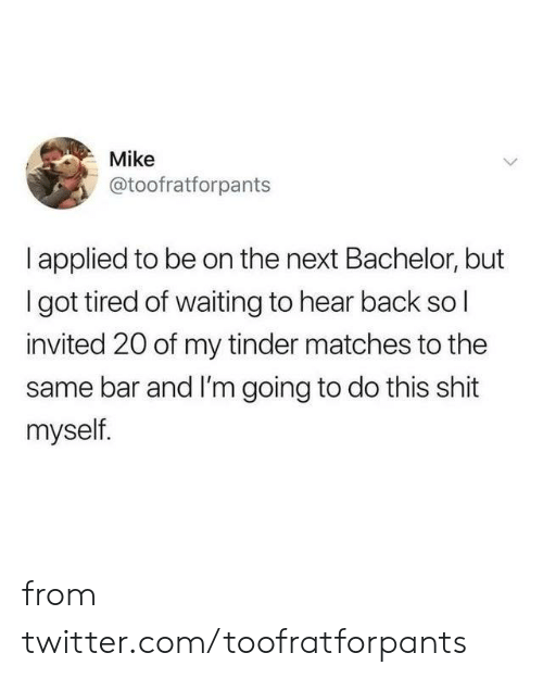 Dank, Shit, and Tinder: Mike  @toofratforpants  I applied to be on the next Bachelor, but  Igot tired of waiting to hear back sol  invited 20 of my tinder matches to the  same bar and I'm going to do this shit  myself. from twitter.com/toofratforpants