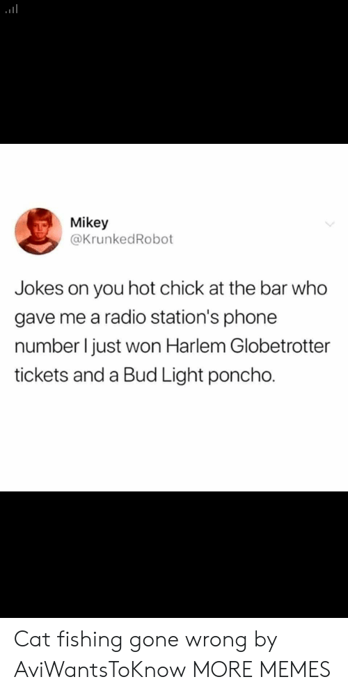 Gone Wrong: Mikey  @KrunkedRobot  you hot chick at the bar who  gave me a radio station's phone  number I just won Harlem Globetrotter  tickets and a Bud Light poncho. Cat fishing gone wrong by AviWantsToKnow MORE MEMES
