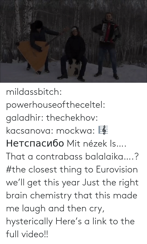 Text: mildassbitch: powerhouseoftheceltel:  galadhir:  thechekhov:  kacsanova:  mockwa:    🎼  Нетспасибо  Mit nézek    Is…. That a contrabass balalaika….?    #the closest thing to Eurovision we'll get this year    Just the right brain chemistry that this made me laugh and then cry, hysterically    Here's a link to the full video!!