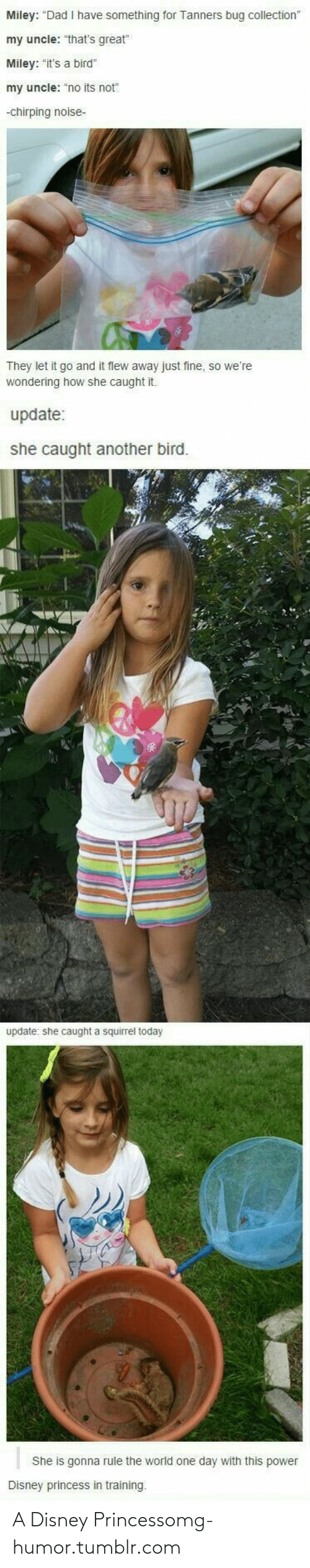 """Chirping: Miley: """"Dad I have something for Tanners bug collection""""  my uncle: """"that's great""""  Miley: """"it's a bird""""  my uncle: """"no its not""""  -chirping noise-  They let it go and it flew away just fine, so we're  wondering how she caught it.  update:  she caught another bird.  update: she caught a squirrel today  She is gonna rule the world one day with this power  Disney princess in training. A Disney Princessomg-humor.tumblr.com"""