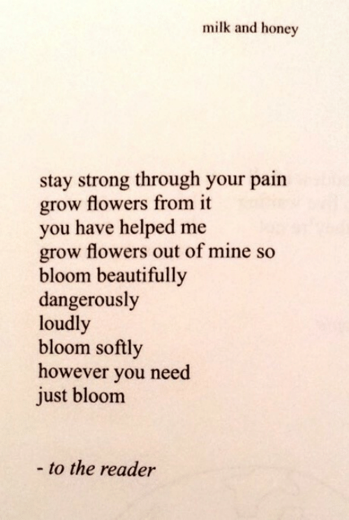 reader: milk and honey  stay strong through your pain  grow flowers from it  you have helped me  grow flowers out of mine so  bloom beautifully  dangerously  loudl  bloom softly  however you need  just bloom  - to the reader