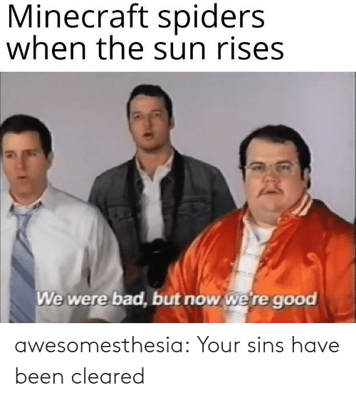 sun: Minecraft spiders  when the sun rises  We were bad, but now we're good awesomesthesia:  Your sins have been cleared