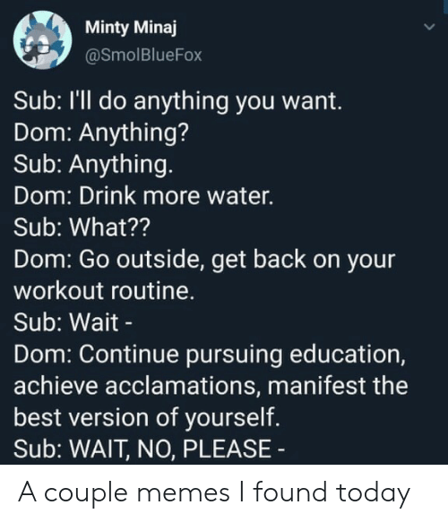 Drink More Water: Minty Minaj  @SmolBlueFox  Sub: I'll do anything you want.  Dom: Anything?  Sub: Anything.  Dom: Drink more water.  Sub: What??  Dom: Go outside, get back on your  workout routine.  Sub: Wait -  Dom: Continue pursuing education,  achieve acclamations, manifest the  best version of yourself.  Sub: WAIT, NO, PLEASE A couple memes I found today