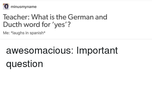 Spanish, Teacher, and Tumblr: minusmyname  Teacher: What is the German and  Ducth word for 'yes'?  Me: *laughs in spanish* awesomacious:  Important question