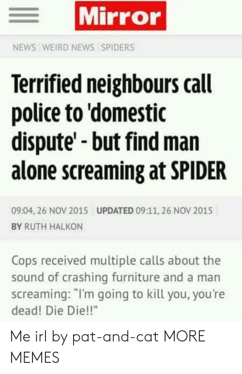 "Being Alone, Dank, and Memes: Mirror  NEWS WEIRD NEWS SPIDERS  Terrified neighbours call  police to 'domestic  dispute'-but find man  alone screaming at SPIDER  09:04, 26 NOV 2015  UPDATED 09:11, 26 NOV 2015  BY RUTH HALKON  Cops received multiple calls about the  sound of crashing furniture and a man  screaming: ""I'm going to kill you, you're  dead! Die Die!!"" Me irl by pat-and-cat MORE MEMES"