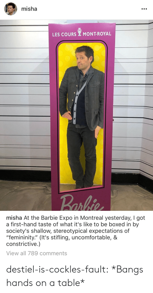 """stereotypical: misha  LES COURS MONT-ROYAL   misha At the Barbie Expo in Montreal yesterday, I got  a first-hand taste of what it's like to be boxed in by  society's shallow, stereotypical expectations of  """"femininity."""" (It's stifling, uncomfortable, &  constrictive.)  View all 789 comments destiel-is-cockles-fault:  *Bangs hands on a table*"""