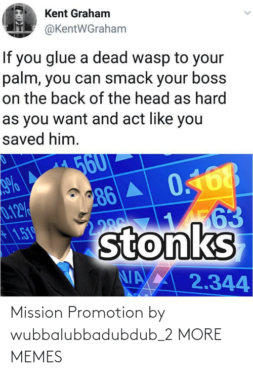 2: Mission Promotion by wubbalubbadubdub_2 MORE MEMES