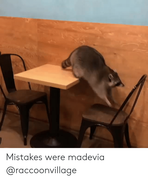 Mistakes Were Made: Mistakes were madevia @raccoonvillage