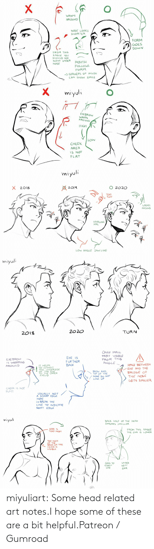 helpful: miyuliart: Some head related art notes.I hope some of these are a bit helpful.Patreon / Gumroad