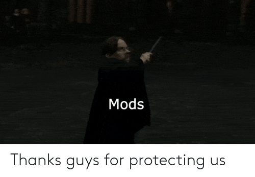 Mods, For, and Guys: Mods Thanks guys for protecting us