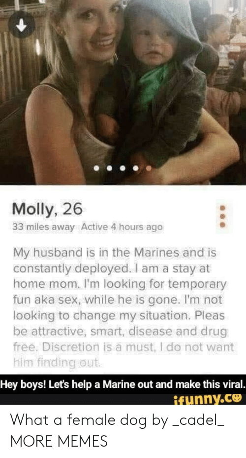 Dank, Memes, and Molly: Molly, 26  33 miles away Active 4 hours ago  My husband is in the Marines and is  constantly deployed. I am a stay at  home mom. I'm looking for temporary  fun aka sex, while he is gone. I'm not  looking to change my situation. Pleas  be attractive, smart, disease and drug  free. Discretion is a must, I do not want  him finding out  Hey boys! Let's help a Marine out and make this viral.  ifunny.co What a female dog by _cadel_ MORE MEMES