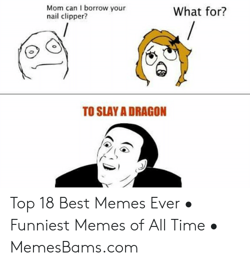 How Do You Say Meme: Mom can I borrow your  nail clipper?  What for?  TO SLAY A DRAGON  0 Top 18 Best Memes Ever • Funniest Memes of All Time • MemesBams.com