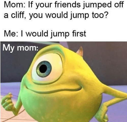 Friends, Memes, and Jumped: Mom: If your friends jumped off  a cliff, you would jump too?  Me: I would jump first  My mom: