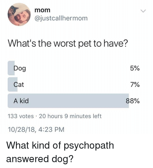 Memes, The Worst, and Mom: mom  @justcallhermom  What's the worst pet to have?  Dog  Cat  A kid  5%  7%  88%  133 votes 20 hours 9 minutes left  10/28/18, 4:23 PM What kind of psychopath answered dog?