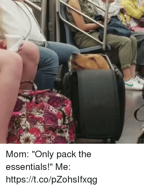"""Girl Memes, Mom, and Essentials: Mom: """"Only pack the essentials!""""  Me:  https://t.co/pZohsIfxqg"""