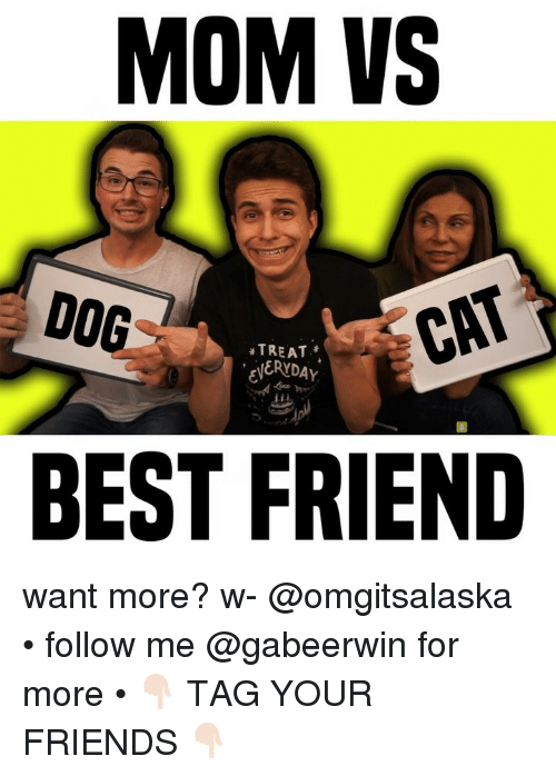 Tag Your Friends: MOM VS  DOG  TREAT  ERYDAY  CAT  BEST FRIEND want more? w- @omgitsalaska • follow me @gabeerwin for more • 👇🏻 TAG YOUR FRIENDS 👇🏻