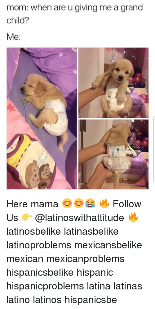 Latinos, Memes, and Grand: mom: when are u giving me a grand  child?  Me:  ·リ Here mama 😊😊😂 🔥 Follow Us 👉 @latinoswithattitude 🔥 latinosbelike latinasbelike latinoproblems mexicansbelike mexican mexicanproblems hispanicsbelike hispanic hispanicproblems latina latinas latino latinos hispanicsbe