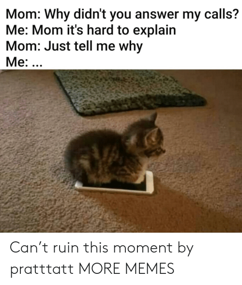 Its Hard: Mom: Why didn't you answer my calls?  Me: Mom it's hard to explain  Mom: Just tell me why  Me: ... Can't ruin this moment by pratttatt MORE MEMES