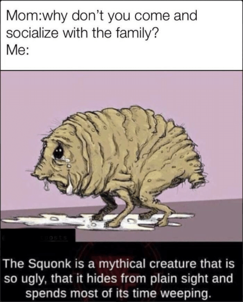 plain: Mom:why don't you come and  socialize with the family?  Me:  oosts  The Squonk is a mythical creature that is  so ugly, that it hides from plain sight and  spends most of its time weeping.